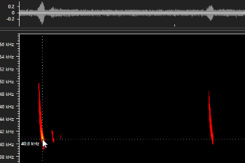 Spectrogram and waveform visualizations